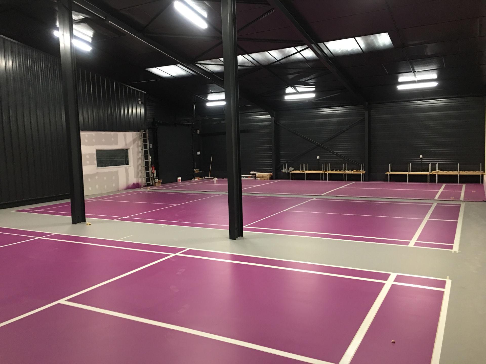 terrain badminton bicolore saint etienne