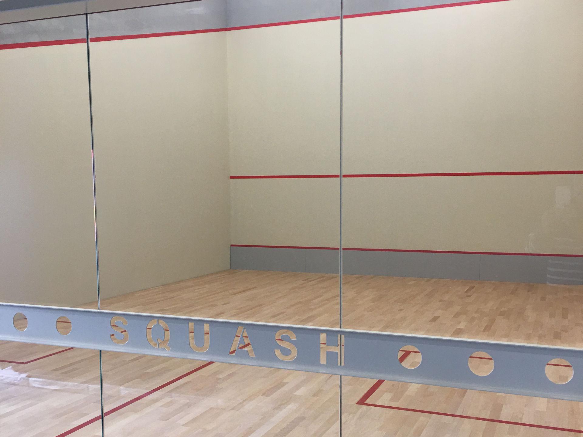 Création court de Squash à  Eaunes